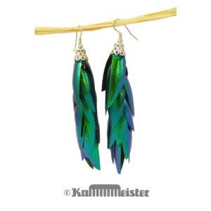 Ohrhänger - lang mit Kappe - Flügeldecken Sternocera Prachtkäfer