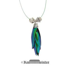 Kette Collier - einfach - Flügeldecken Sternocera Prachtkäfer